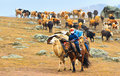 Seasonal livestock migration in Xinjiang China Stock Images
