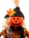 Seasonal:  Pumpkin Headed Scarecrow on White Royalty Free Stock Photo