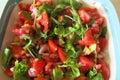 Seasonal salad ready to prepare Royalty Free Stock Images