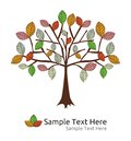 Seasonal tree autumn template vector illustration of the Royalty Free Stock Image