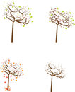 Seasonal trees set vector image of four isolated on white background Royalty Free Stock Photo