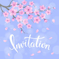 Seasons greeting background with cherry blossoms flowers branches on blue backdrop