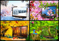 Seasons winter beauty of nature through the window Royalty Free Stock Photography