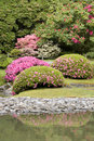 Seattle japanese garden picturesque in spring Royalty Free Stock Images