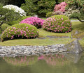 Seattle japanese garden picturesque in spring Stock Photography