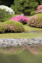 Seattle japanese garden picturesque in spring Stock Photos