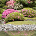 Seattle japanese garden picturesque in spring Stock Images