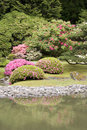 Seattle japanese garden picturesque in spring Royalty Free Stock Image