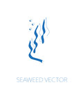 Seaweed minimal illustration