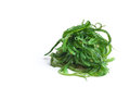 Seaweed salad with sesame seeds isloated on whitem veiw from the side Royalty Free Stock Image