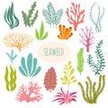 Seaweeds. Aquarium plants, underwater planting. Vector seaweed silhouette isolated set Royalty Free Stock Photo
