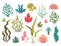 Seaweeds. Underwater ocean plants, sea coral elements, hand drawn ocean flourish algae, cartoon decorative drawing
