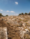 Sebastia ancient israel ruins and excavations in the palestinian territories smaria Royalty Free Stock Images