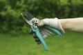 Secateurs in the hand Royalty Free Stock Photo