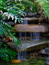 Secluded tropical waterfall Royalty Free Stock Photography