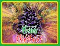 A second to none luscious graphic designing pattern with clip arts of colorful Christmas card Royalty Free Stock Photo