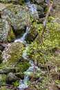 Secret Cascading Waterfall in the Blue Ridge Mountains Royalty Free Stock Photo