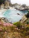 Secret cove wildflowers bloom on coastal california usa Stock Photography