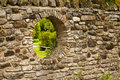 Secret garden hole in wall Royalty Free Stock Photo