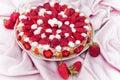 Secteur de fraise Photos libres de droits