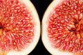Sectioned fruit of fresh fig macro isolated on black background Royalty Free Stock Photography