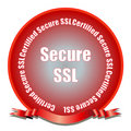 Secure SSL Seal Stock Image
