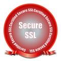 Secure SSL Seal