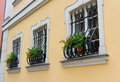 Secured windows with red flowers Royalty Free Stock Photos