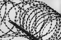 Security fence with razor wire Royalty Free Stock Image