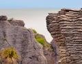 Sedimentary Rocks New Zealand Royalty Free Stock Photo
