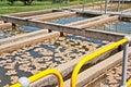 Sedimentation tanks water treatment Royalty Free Stock Photo