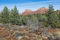 Sedona area landscape with red sandstone cliffs Stock Image