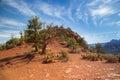 Sedona vortex summit in arizona Stock Images