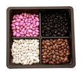 Seed bean Royalty Free Stock Images