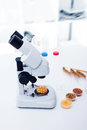 Seed subject to selection in laboratory microbiological Royalty Free Stock Photography