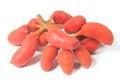 Seed of uvaria rufa blume fruit x carabao teats herb rare in east thailand Stock Photos