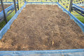 Seeding tray with clay husk and coir Stock Photography