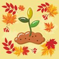 Autumn agricultural icons with autumn leaves_11 Royalty Free Stock Photo