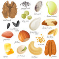 Seeds nuts and beans edible Royalty Free Stock Photos