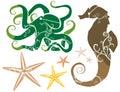 Seethema: Seahorse-KrakeStarfish FARBE Stockbild