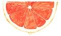 Segment of red grapefruit Royalty Free Stock Photo