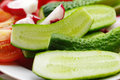 Segments of a fresh cucumber, tomato and garden radish on a plate Royalty Free Stock Photo