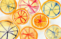 Segments of the orange drawn by watercolors on white background Royalty Free Stock Photography