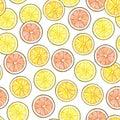 Segments of a yellow lemon of orange orange of red grapefruit fruits on white background. Hand work drawing. Seamless pat
