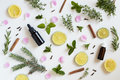 Selection of essential oils and herbs on a white background Royalty Free Stock Photo