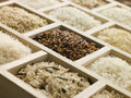 Selection Of Rices Royalty Free Stock Photo