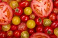 Selection of tomatoes a different types fresh some sliced open Royalty Free Stock Photo