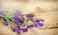 Selective focus on lavender beautiful the knitted tablecloth Stock Images