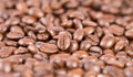 Selective focus of roasted coffee beans the Royalty Free Stock Photography