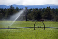 Self propelled irrigation sprayers in field central oregon Royalty Free Stock Photography